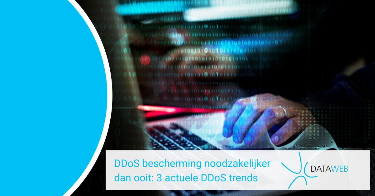 DDoS bescherming, DDoS Protection